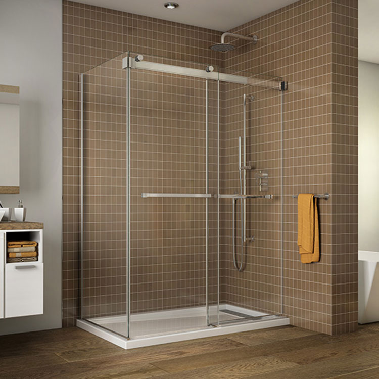 Shower Door Gemini 2 Sided