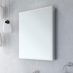 Mirror Luna Medicine Cabinet Single 2430B