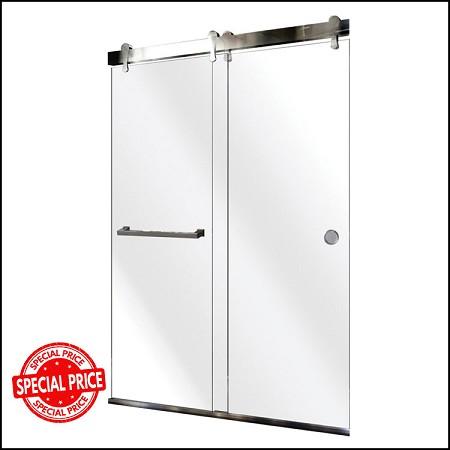 Shower Door 1151872
